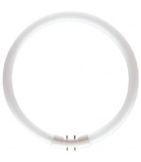 MASTER TL5 Circular 22W/840 1C